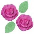 Flores / Rosas / Margaridas